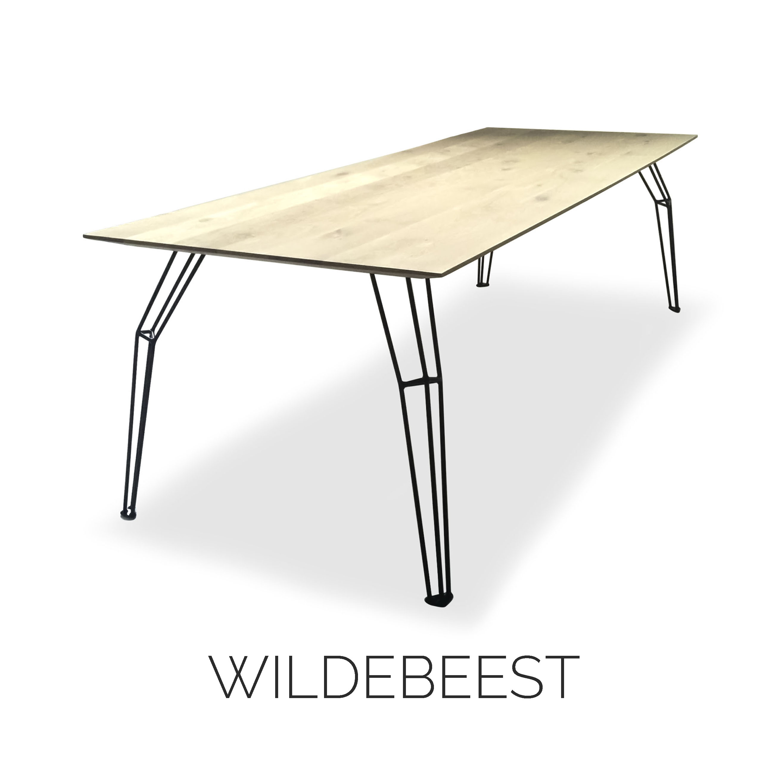 THUMBNAILS COLLECTION WILDEBEEST